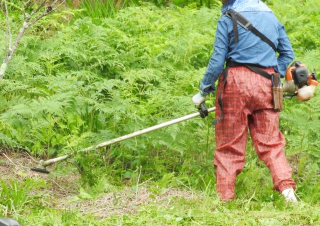 福島市で草刈りにかかる料金相場は?追加料金や業者選びのコツまで解説
